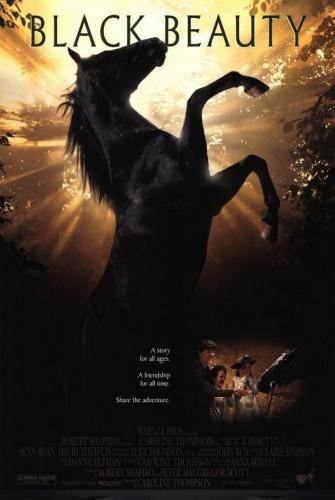 fekete-szepseg-lovas-film