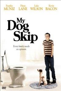 kutyam-skip
