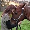 Miért érdemes megtanulni lovagolni?
