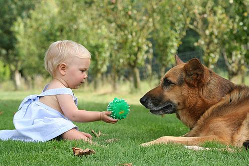 kutya-es-gyerek