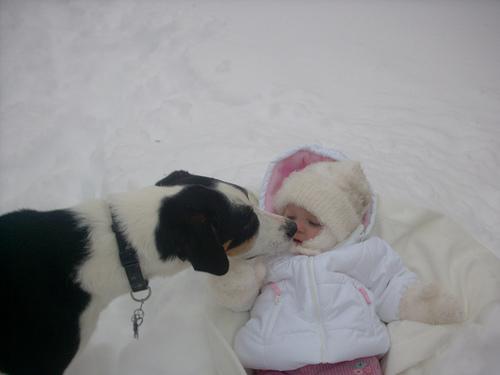 kisbaba-es-kutya
