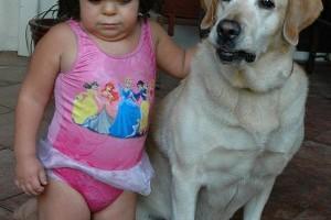 A kutyaürülék veszélyei – hogyan kerüljük el a fertőzést?