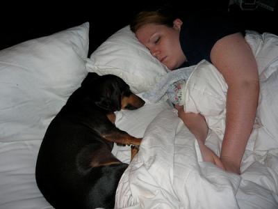 Alvás kutyával
