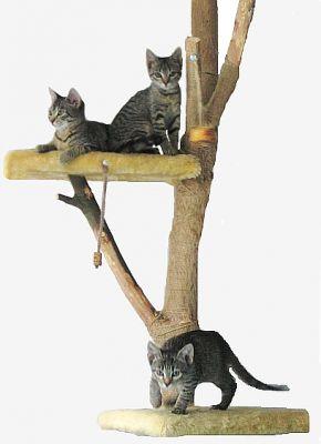 Egy macska mászóka, amelyik úgy néz ki, mint egy valódi fa