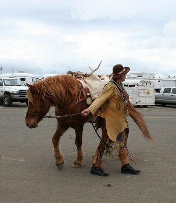 Göndör szőrű ló