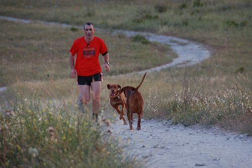 Szaladás kutyával