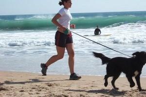 Kocogás a kutyával - bemelegítés