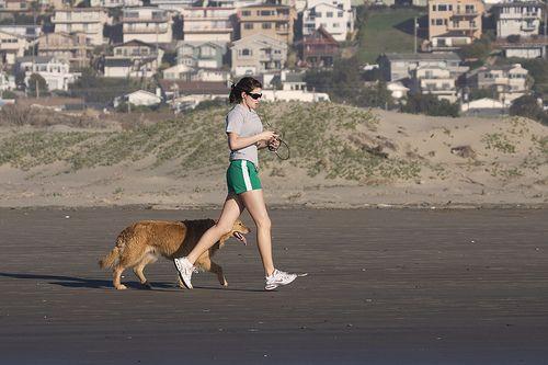 A kutya ideális edzőpartner