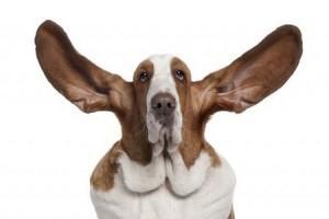 Hallójárat gyulladás (külső fülgyulladás)