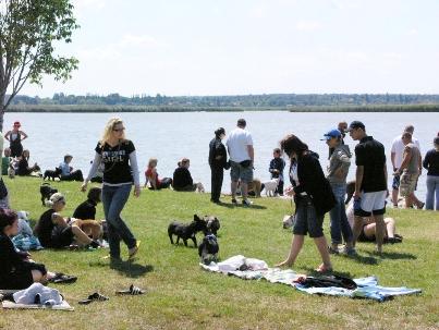 Vízparti bulldog piknik