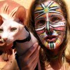 Tiszteld a macskát! Tanácsok macskatartóknak