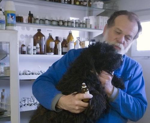 homeopata állatorvos, Dr. Mátray Árpád