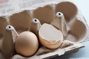 A tojás beiktatása a kutya étrendjébe