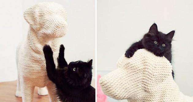 Milyen kaparófát szeretnek a cicák?