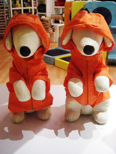 ruha kutyáknak, kutya divat, kutya ruha, divat kutyáknál