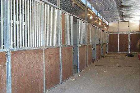 lovak, istálló, gondozás, tisztántartás, lovasbox