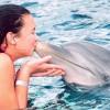 Mit kell tudni a delfinekről? – 2. rész