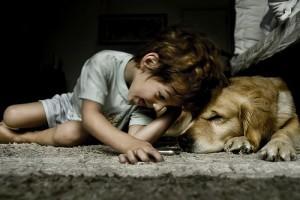 Kicsi gyerek- nagy kutya