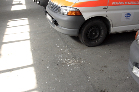 ... lepotyogó ürüléke és ennek száraz szálló pora nemcsak a padlót ...