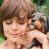 Mitől félnek az állatok? Hogyan kezelhetjük félelmeiket?