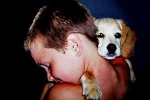 5 tipp a felelős állattartáshoz