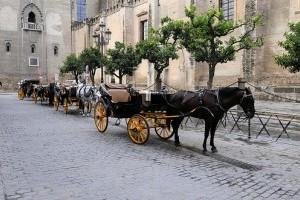 Romantikus lovaskocsikázás Valentin nap alkalmával