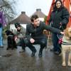 Mennyi gyűlt össze a vakvezető kutyák képzésének támogatására?