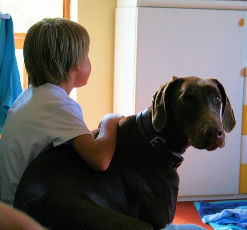 gyerekbarat-kutya