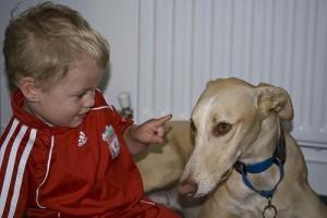 Hogyan taníthatják a kutyák felelősségre a gyermekeinket?