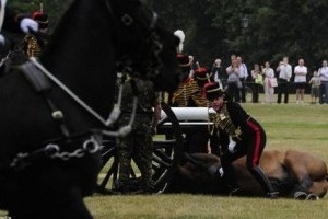 A katonai paci egy ágyú áldozata lett