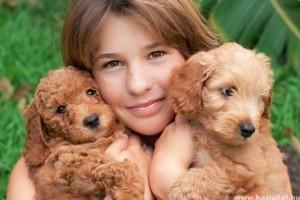 A kutyák bélférgei az emberekre is veszélyesek lehetnek!