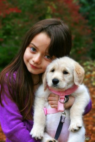 gyerekek-es-kutyusok