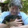 A Paksi Állatmenhelyen örökbefogadásra váró kutyusok