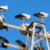 Rendőri kíséret a gólyáknak