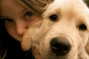 Magyarország kutyás ország: a lakosság felének van kutyája