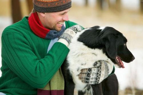 kutya-gazdi-kommunikci-2