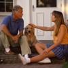 Házőrzőből családtag – trendek a magyar kutyatartásban