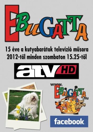 ebugatta-1