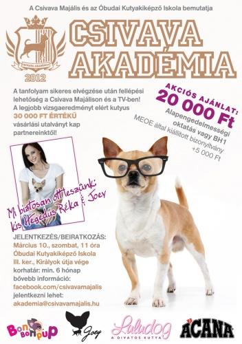 csivava_akademia_flyer_v2