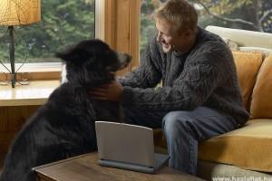 A kutyatartás nem pénzkérdés