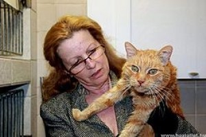 16 év után talált haza a macska