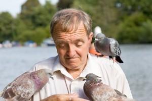 A legegyszerűbb etető madaraknak