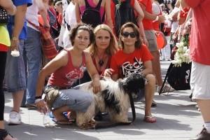 Sztárok tiltakoztak a labdarúgó Eb ukrán állatmészárlásai ellen