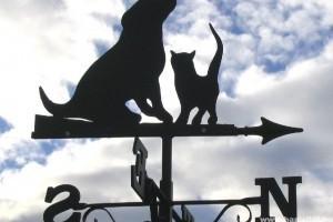 Életbe lépett a szigorúbb állattartási törvény