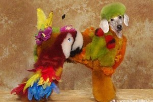 Őrült gazdik kutyafestése