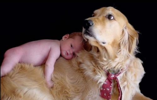 cuki-kutya-gyerekkel