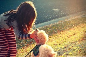 Gyerekek és kutyák – a siker titka?