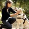 A vakvezető kutyával közlekedők is segítségre szorulnak