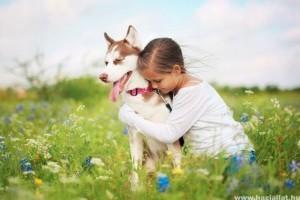 Rupert Sheldrake: Honnan tudják a kutyák, mikor jön haza a gazdi?