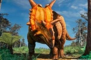Xenoceratops az új